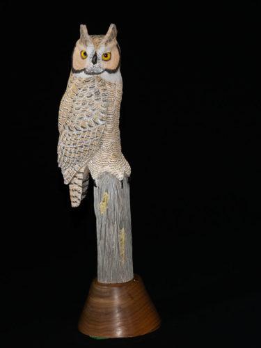 Great-horned Owl